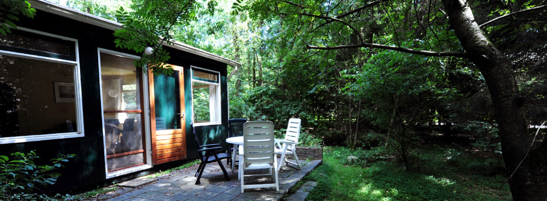 Terras in eigen bostuin: Brummel vakantiehuis bij Norg Drenthe
