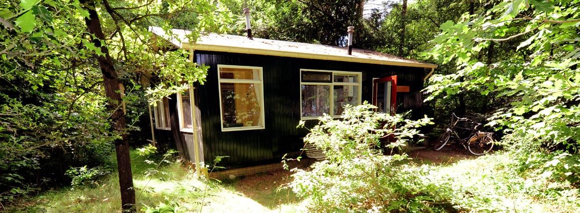 Brummel: vakantiehuisje bij Norg Drenthe